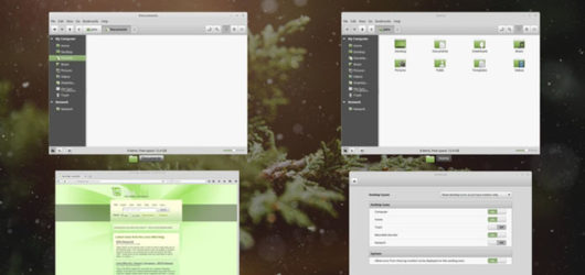 Linux Mint Screenshot 3