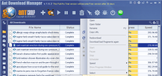 Ant Download Manager Screenshot 1