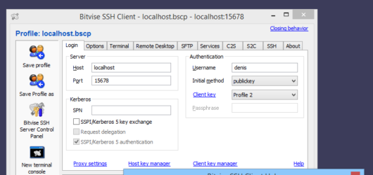 Bitvise SSH Client Screenshot 1