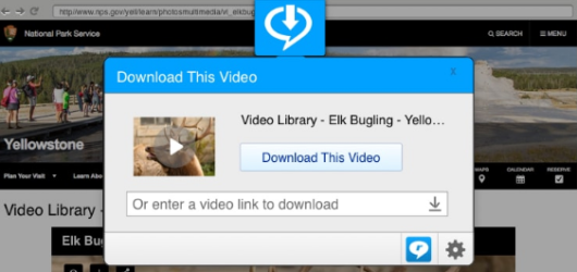 RealPlayer Screenshot 1