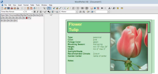 Corel WordPerfect Office Screenshot 1