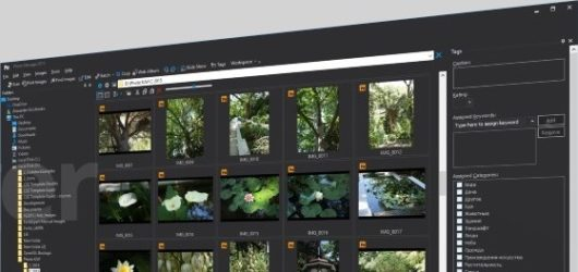 Proxima Photo Manager Screenshot 1